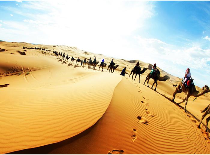 Sahara Desert Comfort Tour 5d/4n