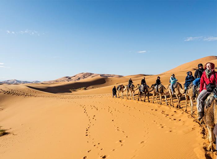 Zagora Camel Ride Tour 2d/1n
