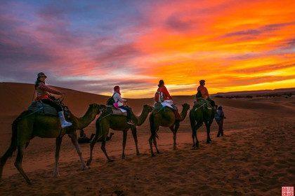 Sahara desert morocco